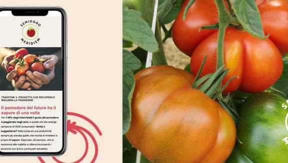 comunicare il food Meridiem Seeds Semidoro